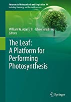 The Leaf: A Platform for Performing Photosynthesis (Advances in Photosynthesis and Respiration (44))