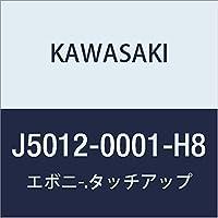 KAWASAKI (カワサキ) タッチアップペイント 【 容量:15ml 】 カラー:エボニー J5012-0001-H8