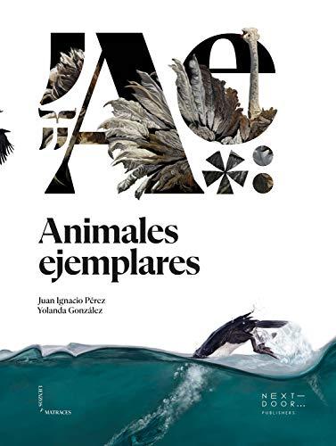 Animales ejemplares (Lienzos y Matraces nº 11) (Spanish Edition)