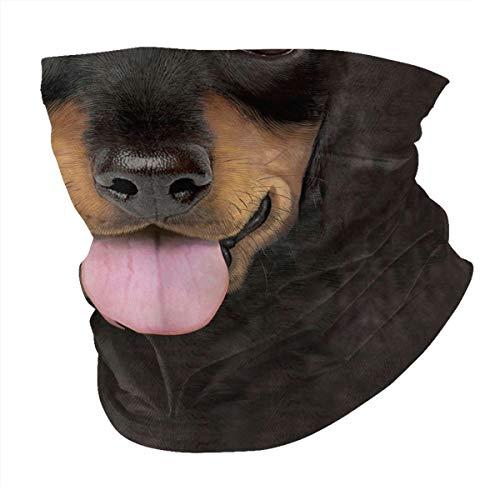 Black Piebald Dapple Brown Red Doxie Dachshund Weiner Dog Pet 3d Animal Cooling Neck Gaiter Dust Face Mask Bandana Bavaclava Headband Scarf Reusable Unisex Men Women Adult Washable