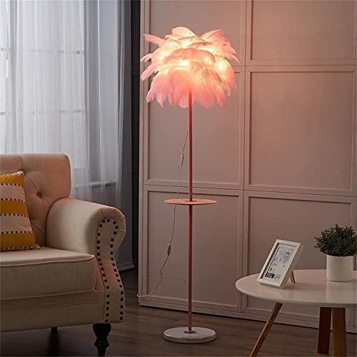 Lilac Fower Shop Lamp Rosa Blanco Control Remoto USB Pluma De Pluma Lámpara De Sala De Estar Nórdica Lámpara De Mesa De Noche Lámpara De Mesa (Color : Pink)