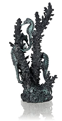 OASE 55062 Seepferdchen, M, schwarz