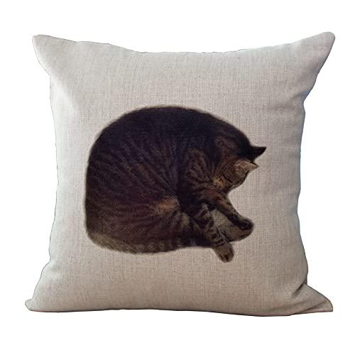 MissW Funda De Almohada Decorativa De La Serie Cute Cat Funda De Almohada Geométrica Irregular Sin Núcleo De Almohada Funda De Cojín Adecuada para Sofá Dormitorio