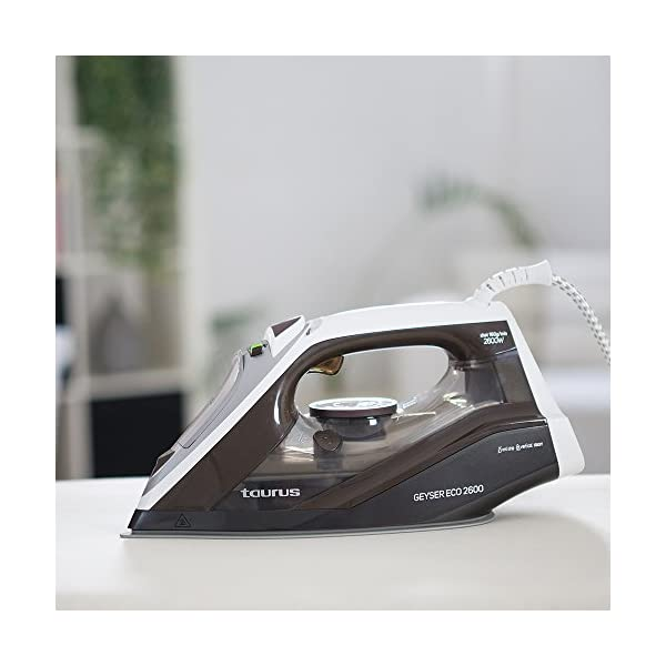 Taurus Geyser Eco 2600 – Plancha, Elimina Virus y bacterias, 160 g/min,