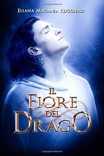 Il Fiore del Drago: A Fantasy Gay Thriller