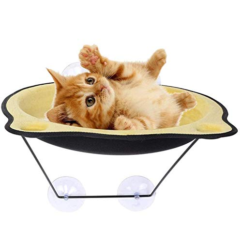 Dongbin Gambling wall cat bed, suction cup window Pet hanging bed for cats puppy, glass suction cup-type hanging basket swing,C