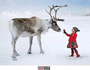 Little Girl and Reindeer Christmas Cards Boxed Set of 12 Holiday Cards and 12 Envelopes Made in USA.