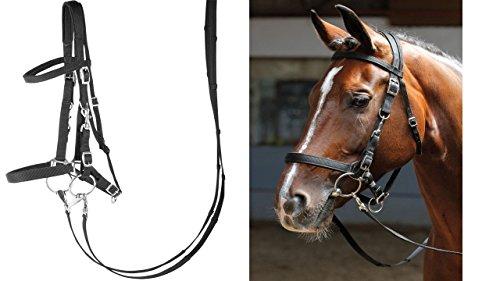 Harry's Horse Hoofdstel/halster, Farbe:schwarz, Größe:Pony