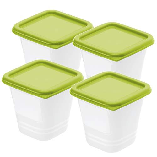 Rotho Domino 4er-Set Gefrierbox 0,22l mit Deckel, Kunststoff (PP) BPA-frei, grün/transparent, 4 x 0,22l (8,0 x 8,0 x 11,8 cm)
