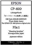 Old Digital Camera EPSON CP-600 auto mode file1 tabibitotokamera EPSON CP-600 (Japanese Edition)