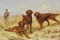 大人のための番号によるDIYペイント大人と子供のための番号によるアイリッシュセッター犬のペイント事前に印刷されたDIY油絵ギフトキット