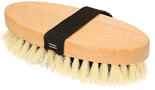 KOTARBAU® Cepillo brillante de 20 cm para cepillar caballos perros gatos