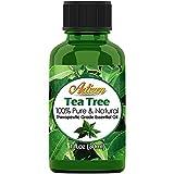 Artizen Tea Tree Essential Oil (100% Pure & Natural - Undiluted)...