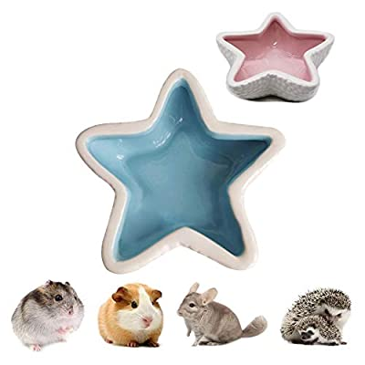 Kuoser Hamster Snack Bowl Ceramic Starfish Design cooling Bed, Food Water Dish for Small Animal, Rodents Gerbil Mice Guinea Pig Chinchilla Squirrel Hedgehog Blue Pink by Kuoser