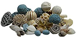 Seashells as autumn decorations for outside