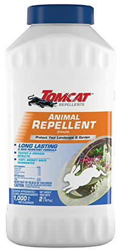 Tomcat Repellents Animal Repellent Granules1 - Repels Rabbits, Squirrels, Groundhogs and Other Small Animals, Contains Essential Oils, Long Lasting, No Stink, Rain-Resistant, 2 lbs.