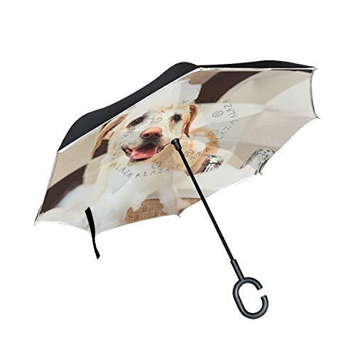 SKYDA Regenschirm, umgekehrt, faltbar, für Hunde und Bad, umgekehrt, doppelschichtig, Winddicht, Regenschirm für Auto und Regen im Freien, mit C-förmigem Griff