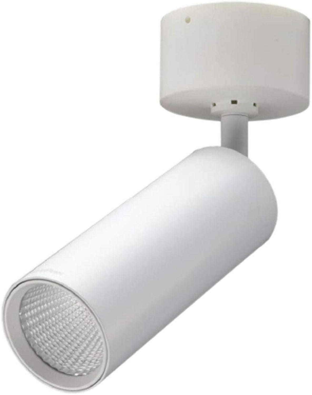 LED Scheinwerfer, Decke Einstellbar 10W18W Gang Kostenlose Erffnung Heimwerken Scheinwerfer (Farbe   3000k, Größe   18w Weiß)