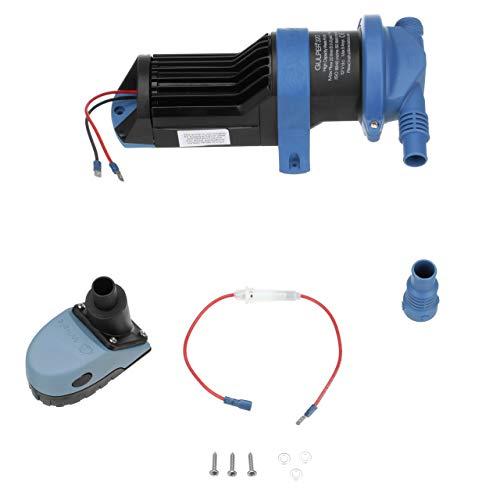 Osculati 16.156.24 - Pompa Whale Gulper 320 24 V (Whale Gulper pump 320 24V)