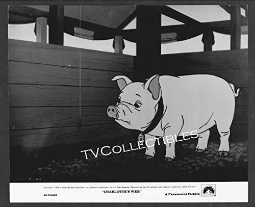 8x10 Photo~ CHARLOTTE'S WEB ~1973 ~Wilbur the Pig ~Charlotte the Spider ~Cartoon
