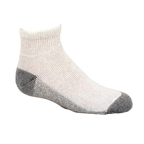 Fruit of the Loom Big Boys' 10 Pack Ankle Socks, Assorted, Shoe: 9-2.5
