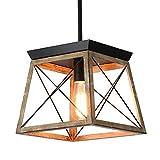 Ganeed Farmhouse Jaula de metal con lámpara colgante con