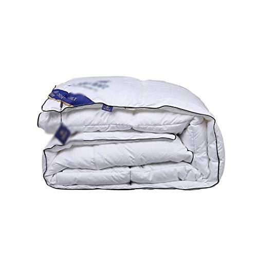 JIAJULL Winter Quilt, Weiß Daunendecke, 95{ace04816850a695e751f52bde1b6473c736ebdc3f3b2c66f102e710c147c60b0} Polyester-Faser-Daunendecke, 200 * 230cm, 3kg, All-Season Daunendecke