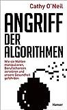 Angriff der Algorithmen: Wie sie Wahlen manipulieren, Berufschancen zerstören und unsere Gesundheit gefährden