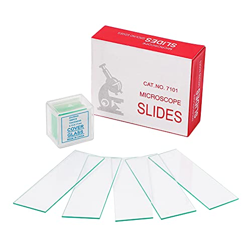 Pre-Cleaned Blank Microscope Slides Kit丨50PCS Ground Edge Glass Microscope Slides and 100PCS Square Cover Glass Slips Coverslips Set for Lab Science