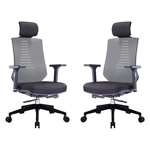 KLASIKA Ergonomic Office Chair with Height Adjustable Back and Lumbar Support Swivel Fabric Seat for Computer Home Desk 2 Pack