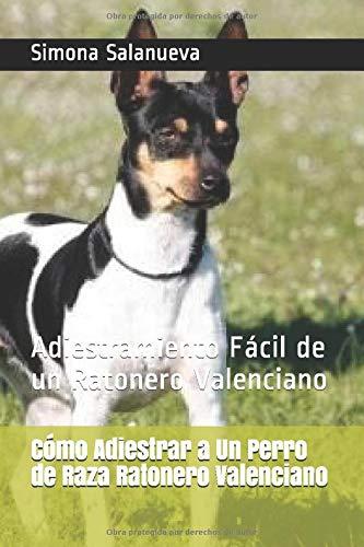 Cómo Adiestrar a Un Perro de Raza Ratonero Valenciano: Adiestramiento Fácil de un Ratonero Valenciano