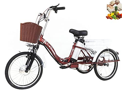 Vélo électrique Tricycle Adulte à 3 Roues pour Les Parents pour agrandir Le Panier arrière 20 ''Tricycle à Assistance électrique 48V10AH Lithium (Cadenas de vélo Gratuit + imperméable)
