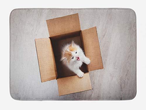 ABAKUHAUS Gatito Tapete para Baño, Gato en una Caja de cartón, Decorativo de Felpa Estampada con Dorso Antideslizante, 45 cm x 75 cm, Taupe y Camel
