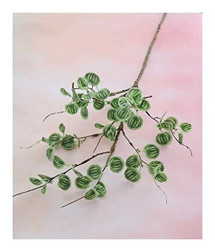 Roovtap Künstliches grünes Blatt Pflanze Zweig Efeu Wassermelone Blatt Hochzeit Hauptdekoration Blumenschmuck Dried Flower (Color : Watermelon Leaves)
