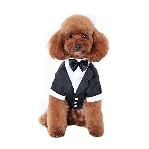 Keysui Welpe Haustier Hund Fliege Smoking Hochzeit Katze Kostume Mantel M