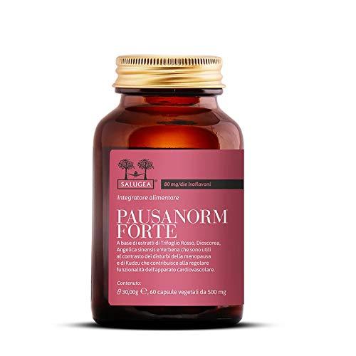 Antiossidante isoflavoni