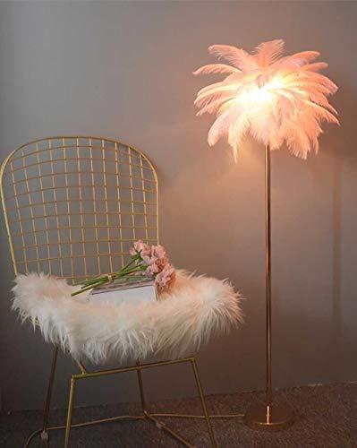 Lámpara de polo alto elegante Lámpara de pie de plumas, lámpara de pie natural de 1.6m de altura y altura de la lámpara de pie natural, metal electroplateado y base redonda, sala de estar de la sala d