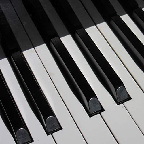Yoga Piano Music, Concentration Study & Piano para Dormir