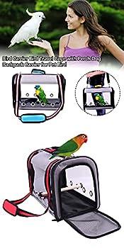Cage de transport pour oiseaux, sac à main portable pour animal domestique, sac à bandoulière, sac de transport léger transparent respirant avec support de perchoir pour perruches, calopsittes