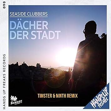 Dächer der Stadt (Timster & Ninth Remix)