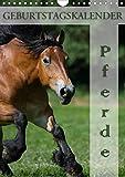 Pferde/Planer (Wandkalender 2020 DIN A4 hoch)