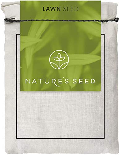 Nature's Seed S-TRRE-1500-F Dutch Clover, 1500 sq. ft