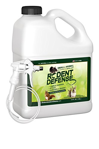 Exterminators Choice Small Rodent Defense Spray   1 Gallon   Small Rodent Repellent Spray   Easy Pest Control For Mice And Rats   Uses Peppermint Oil To Keep Them Away