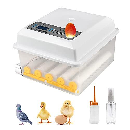 KKTECT Inkubator, Vollautomatische Brutmaschine mit Wender und LED Temperaturanzeige, Brutapparat für 9-16 Hühnereier, Brutkasten Hühner für Geflügeleier Gänseeier Puten Hühner Vögeln