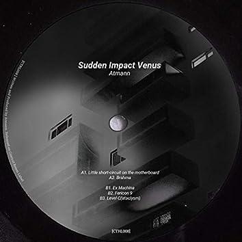 Sudden Impact Venus