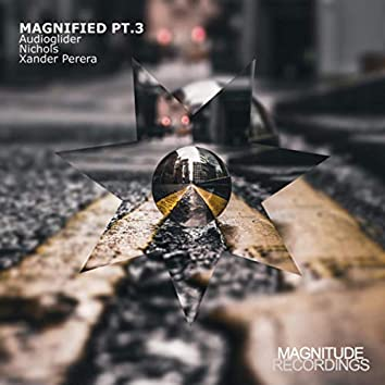 Magnified Pt. 3