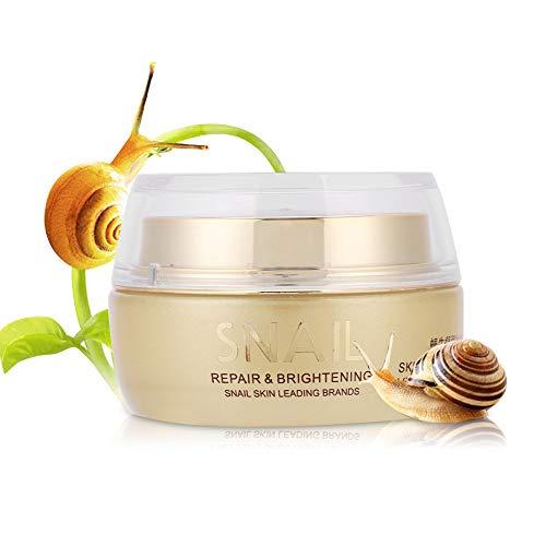 50g Snail Facial Cream Skin Repairing Whitening Feuchtigkeitsspendende Anti-Falten-Reparatur Straffende Feuchtigkeitscreme für die Gesichtshaut für alle Hauttypen Empfindlich, Fettig, Trocken, Stark