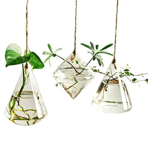 candora Unregelmäßige Geometrische Vase Glas-Gefäß zum Aufhängen Pflanzgefäße Blumentöpfe/Wasser Pflanzgefäß Vase Set inkl. 3Stück mit Saiten