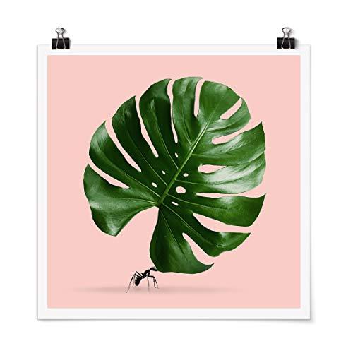 Bilderwelten Poster - Ant with Leaf Monstera Carré Fini satiné Autocollant 30 x 30cm