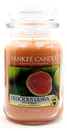 Yankee Candle Delicious Guava Classico Signature Vorratsdose, groß, 623 g